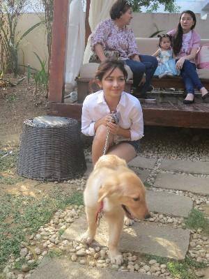 Celebs bring their dogs at Kathryn Bernardo's dog party